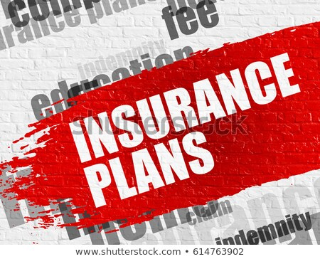 Insurance Plan on Brick Wall. Wordcloud Concept. Stock photo © tashatuvango