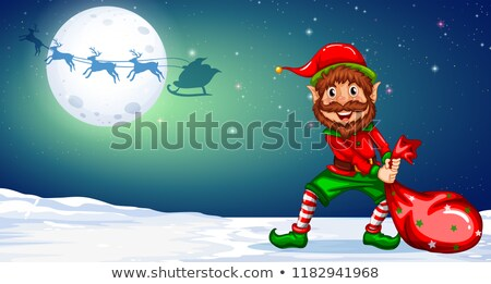 christmas elf in winternight background stock photo © colematt