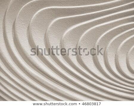 Ondulato curve arenaria superficie texture abstract Foto d'archivio © inxti
