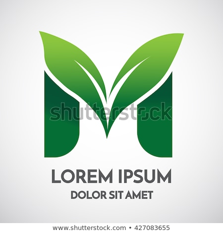 Yeşil mektup m yaprak ikon vektör simge Stok fotoğraf © blaskorizov
