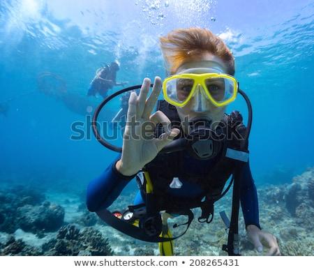 mergulho · subaquático · mergulhador · ícone · vetor - foto stock © colematt