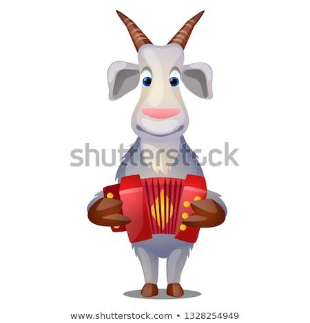 Drôle chèvre accordéon isolé blanche vecteur Photo stock © Lady-Luck