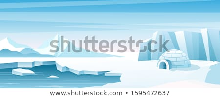 Igloo in the north pole Stock photo © bluering