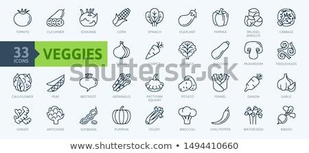 Karfiol ikon árnyék tükröződés terv étel Stock fotó © angelp