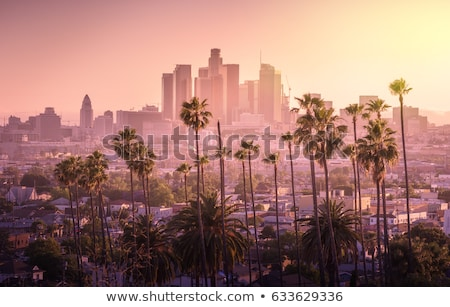 Los · Angeles · Californië · hollywood · heuvels · stad - stockfoto © jsnover