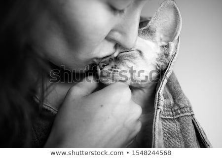 Close up on young woman kissing adorable cat Stock photo © Giulio_Fornasar