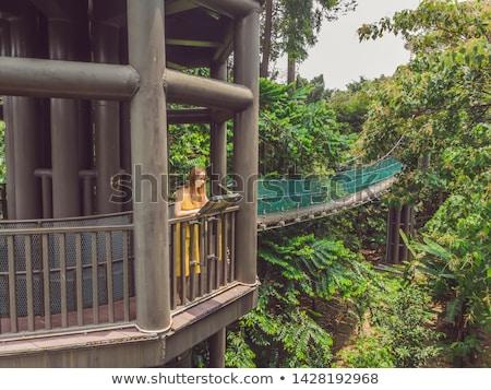 Vue pont suspendu Kuala Lumpur forêt ciel bâtiment Photo stock © galitskaya
