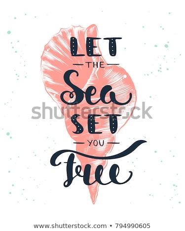 Stok fotoğraf: Sörf · üst · görmek · sörfçü · plaj