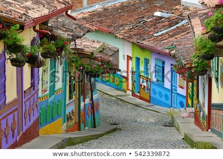 Színes építészet Colombia kilátás ház épület Stock fotó © boggy