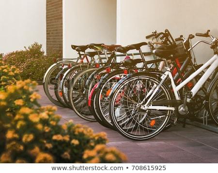 Stockfoto: Fiets · parkeren · straat · metaal · fiets · stedelijke
