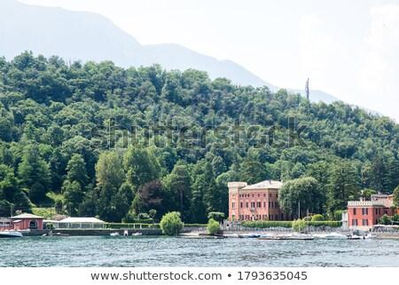 Como Lake, Italy. Panoramic View of Shoreline with Houses. Stock photo © ShustrikS