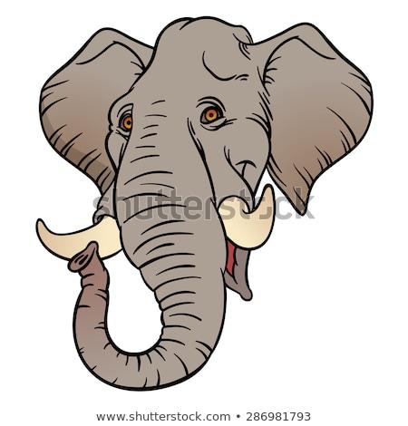 Índia desenho animado ilustração engraçado Foto stock © balabolka