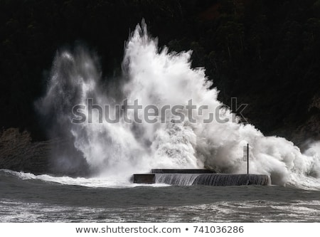 Big waves breaking on the shore with sea foam Stock photo © galitskaya