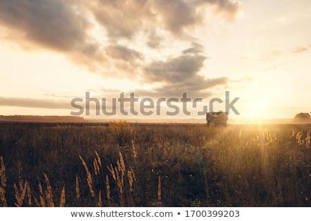 Terkedilmiş ahır yüksek dinamik görüntü Stok fotoğraf © macropixel