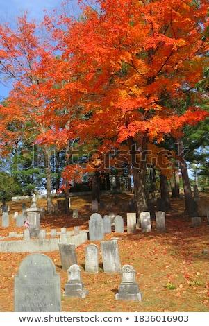 martwych · koniec · cmentarz · znak · drogowy · drogowego - zdjęcia stock © taigi