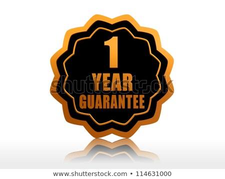 Bir yıl garanti etiket altın metin Stok fotoğraf © marinini