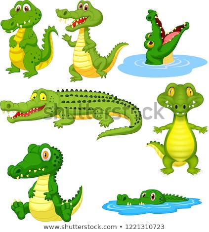 Crocodile cartoon waving hand Stock photo © dagadu