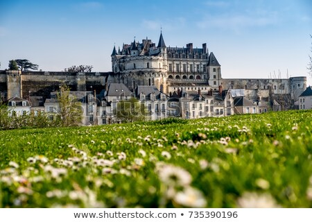 Old town of Amboise, France Stock photo © neirfy