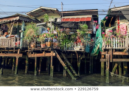 houses along a canal in Bangkok Stock photo © meinzahn