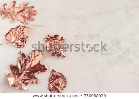 Otono aumentó retrato romántica nina rosas Foto stock © Allegro