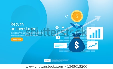 ROI. Business Concept. Stock photo © tashatuvango