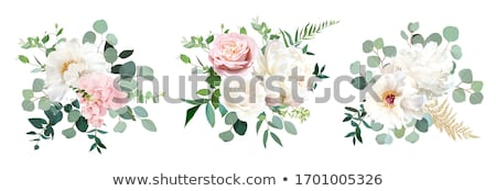 Flores blancas aislado blanco naturaleza presente Foto stock © Nelosa
