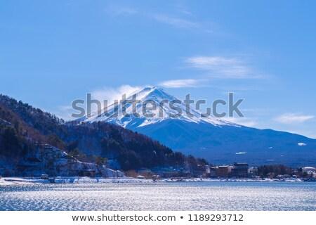 Bos mooie Mount Fuji blauwe hemel hemel bos Stockfoto © shihina