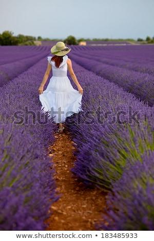女性 長い 緑 ドレス 帽子 ラベンダー畑 ストックフォト © Nejron