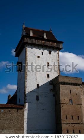 Stockfoto: Middeleeuwse · ridder · stenen · muur · man · oorlog · Blauw