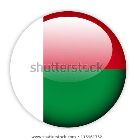 Harita bayrak düğme Madagaskar vektör görüntü Stok fotoğraf © Istanbul2009