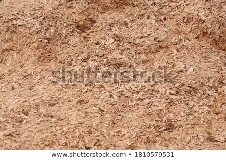 Sawdust background Stock photo © Hofmeester