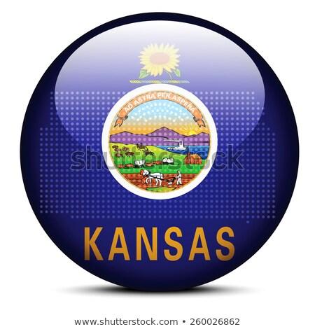Stok fotoğraf: Map With Dot Pattern On Flag Button Of Usa Kansas State