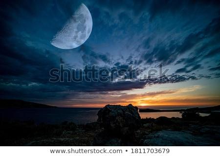 Zeegezicht nacht kustlijn maanlicht sterren hemel Stockfoto © All32