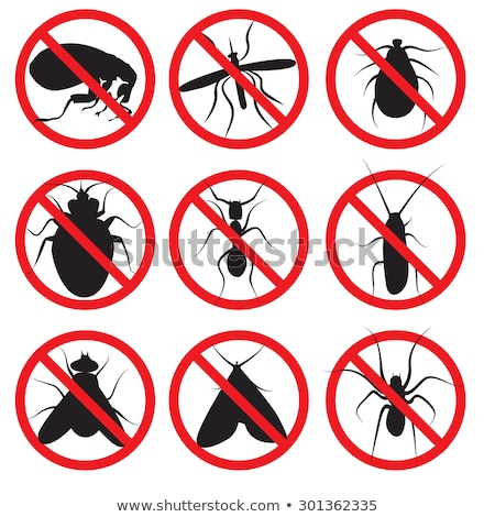 Prohibition Sign Cockroach Stock photo © ivelin