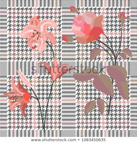 Stock photo: Red Royal lily on checkered background
