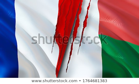 Frankrijk Madagascar vlaggen puzzel geïsoleerd witte Stockfoto © Istanbul2009