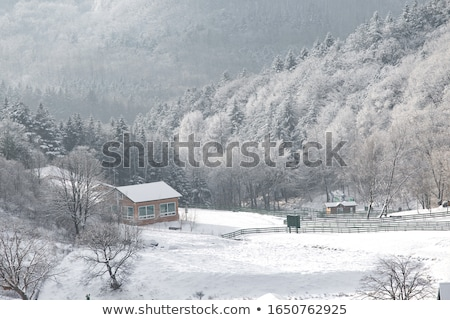 winter · ochtend · berg · dorp · oude · houten - stockfoto © kotenko