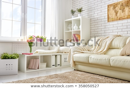 Detail of a house plant in a living room Stock photo © jrstock