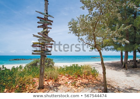 clave · oeste · playa · fuerte · parque · Florida - foto stock © lunamarina