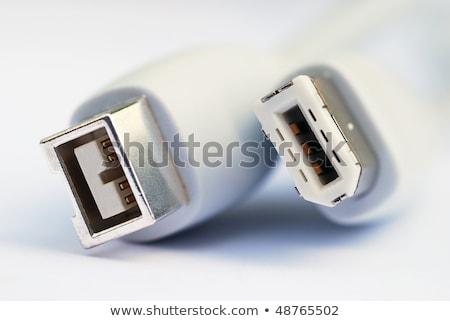 Firewire cable Stock photo © devon