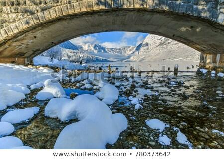 ponte · montagna · foresta · legno · vicino · acqua - foto d'archivio © stevanovicigor