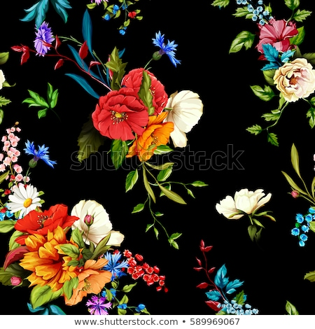 Floral seamless pattern. Flower rose black background. Flourish  Stock photo © Terriana