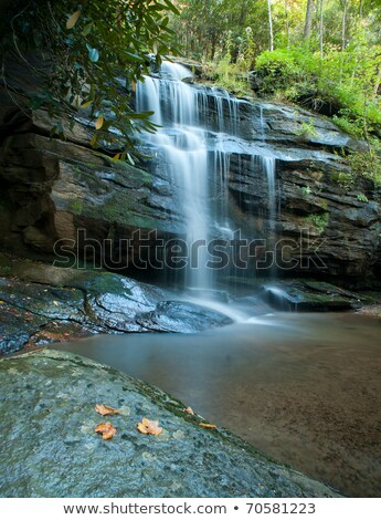 Stock photo: Waterfall with two trees on the rock