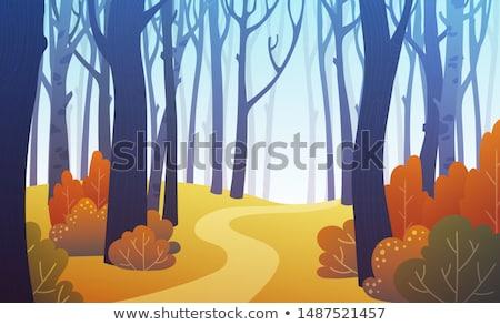 ősz tájkép nyírfa levelek hegy erdő Stock fotó © Kotenko