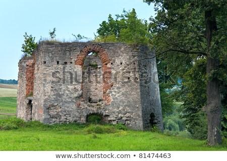 Summer evening Svirzh Castle dilapidated tower view (Ukraine). Stock photo © wildman