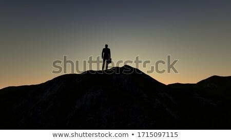 üzletember áll hegy fiatal üzlet férfi Stock fotó © ra2studio