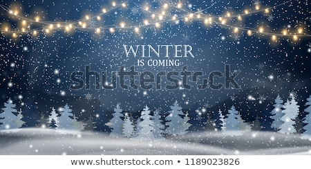 White Christmas with snowfall in the fir forest Stock photo © Kotenko