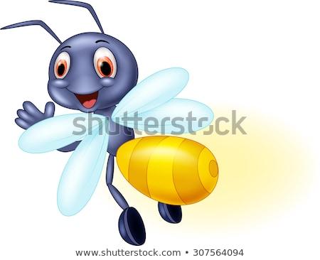 Rajz szentjánosbogár mosolyog illusztráció grafikus Stock fotó © cthoman