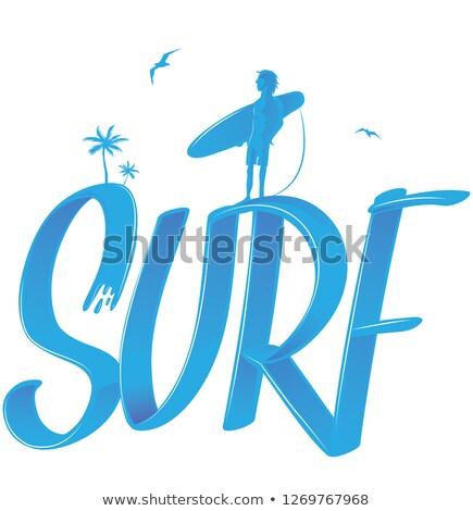 szörf · pálmafák · szörfös · 3D · stílus · vektor - stock fotó © doomko