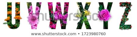 heldere · mooie · boeket · kleurrijk · mooie · bloemen - stockfoto © ruslanshramko
